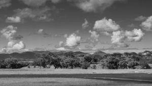 Africa-by-Martin-Szabo-1.jpg