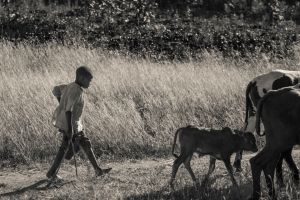 Africa-by-Martin-Szabo-7.jpg