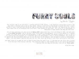 Furry Souls Artist Statement